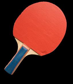 Racchetta Ping Pong Trieste Sistiana